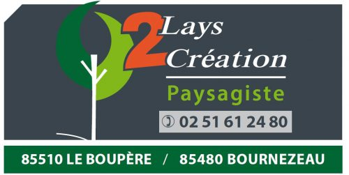 logo 2 Lays Creation